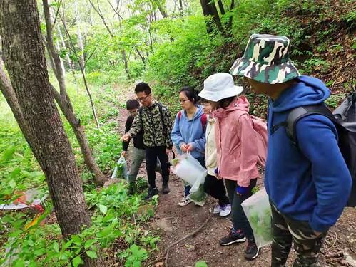 Thu, 06/24/2021 - 09:46 - Dr. Bo Liu, a plant taxonomist, teaches the field crew plant identification skills.  From left to right: Shuaiwei Xu, Bo Liu, Xingyu Wang, Jing Sun, Lijing Zhou and Thant Sin Aung.  Photo credit: Chenhao Huang
