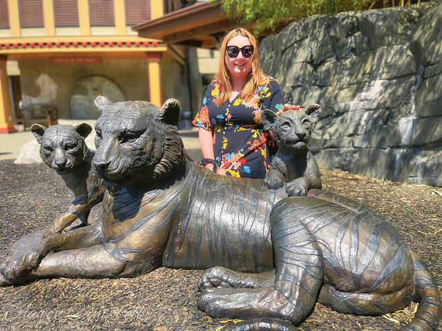 Beth and the Tigers, 2021.05.15