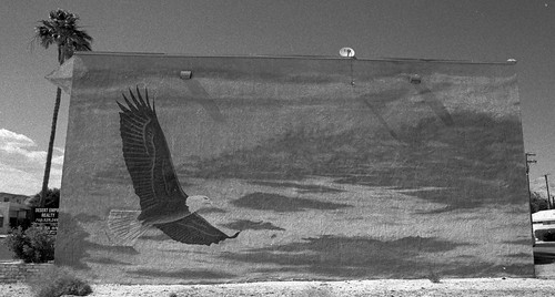 Mural at 12380 Palm Drive
