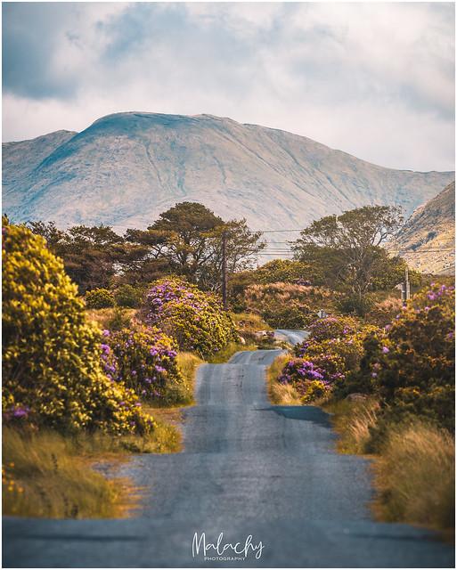 Empty roads of Ireland