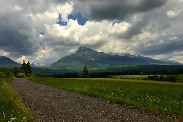 June landscape