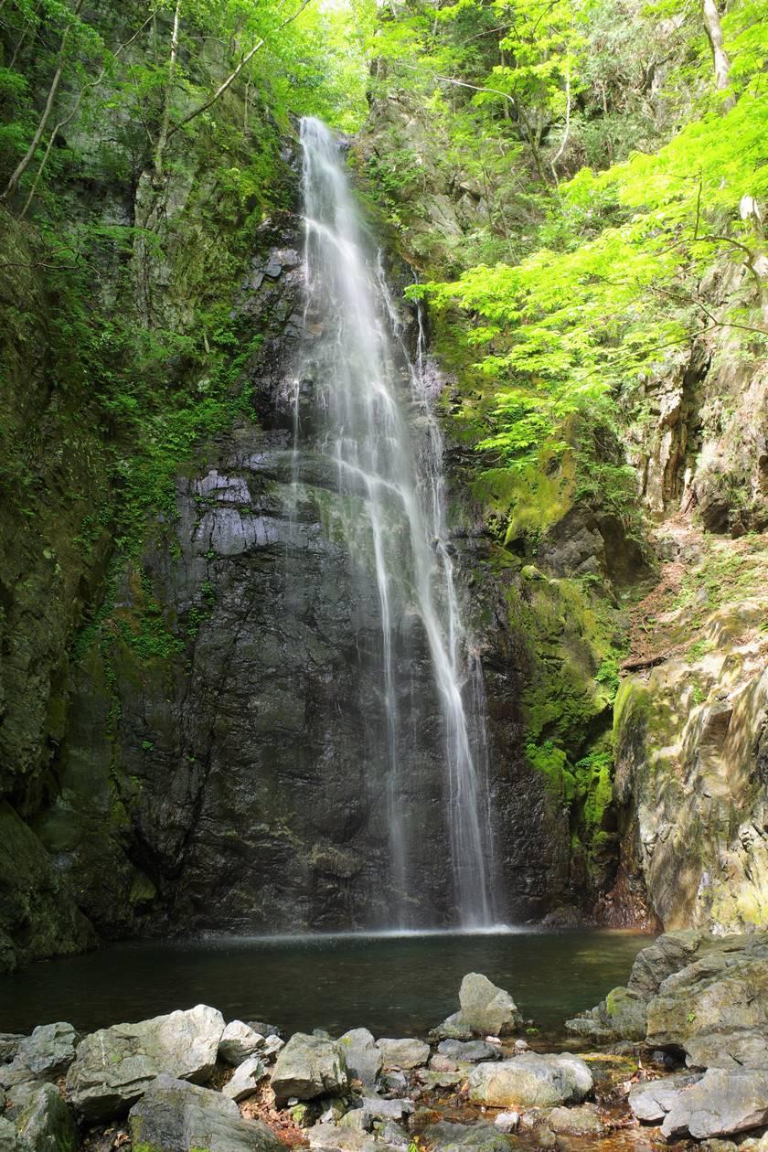 川苔山・百尋の滝