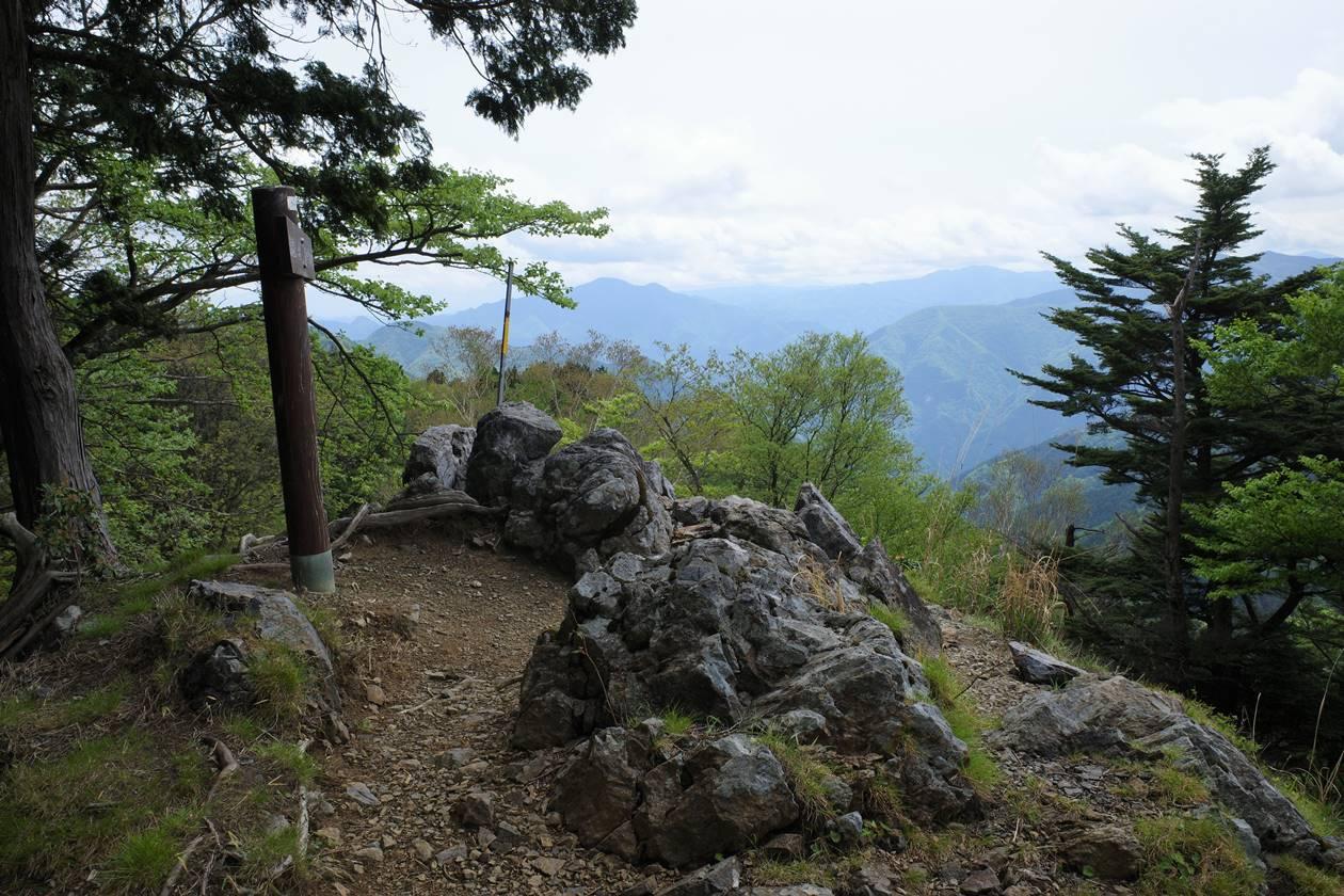 日向沢の峰山頂