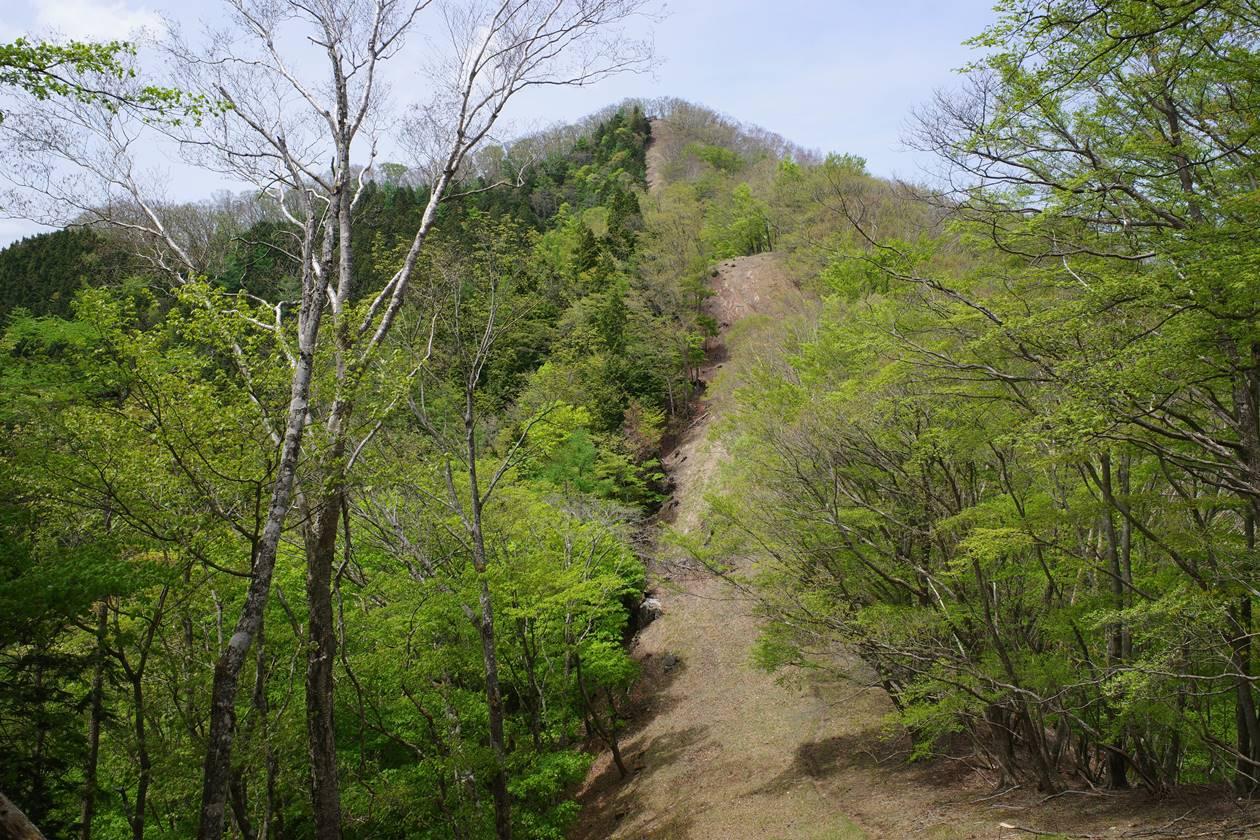 奥多摩・蕎麦粒山の急登