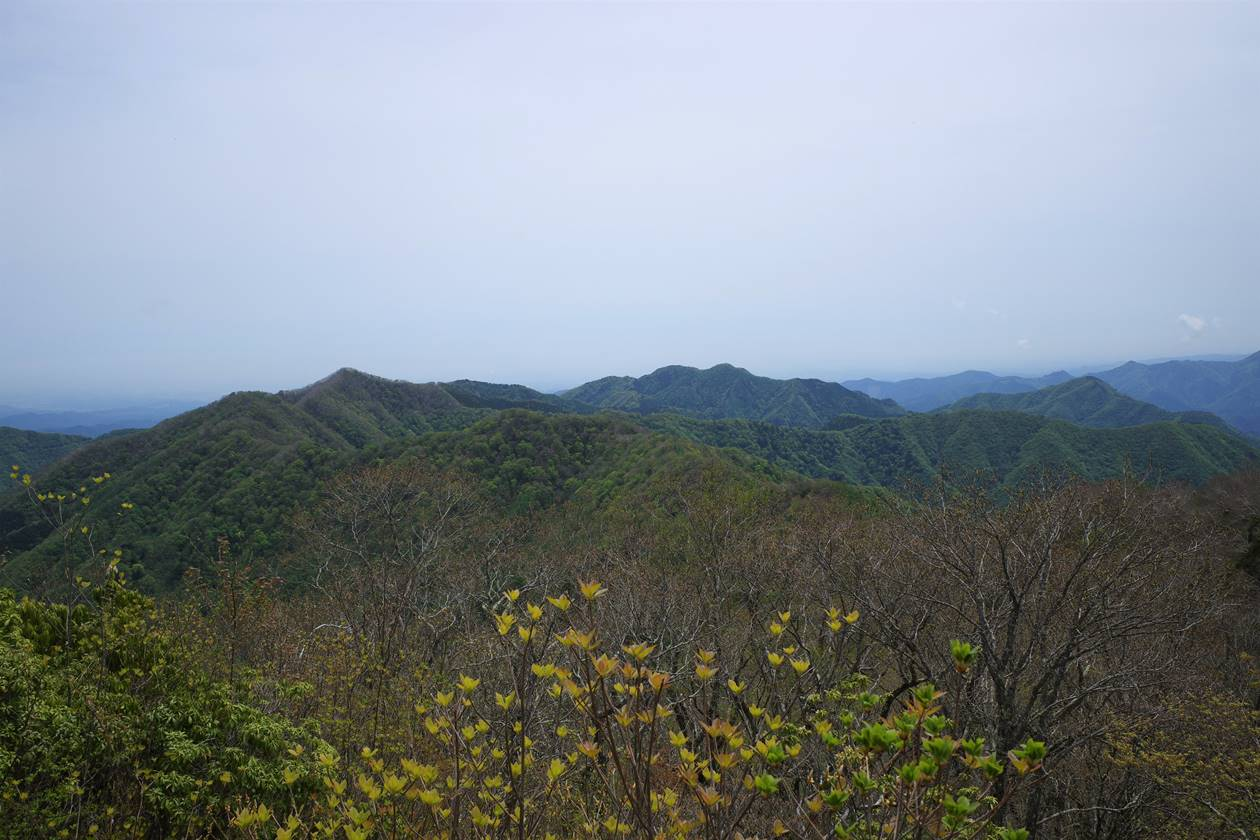 奥多摩・天目山山頂から眺める蕎麦粒山~川苔山