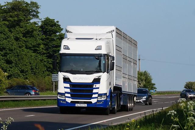 3 DSC08326.  A66 Trucks, Hargill, North Yorkshire. lIVESTOCK TRANSPORT. SCANIA.