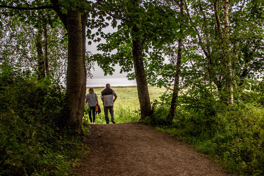 2021 - 06 - 24 - EOS 600D - Wales Coast Path - Dee Estuary - Flintshire - 000
