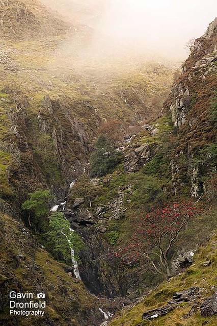 IMG_0915: Warnscale Beck gully Cumbria UK