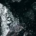 令和カメテク向上倶楽部#26 『水を高速シャッターで』