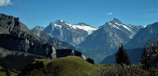 Schynige Platte (Alps Bernesos)