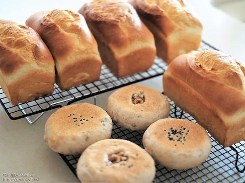 パンドミ・バタートップ・平焼きくるみパン 20210623-DSCT7199 (3)