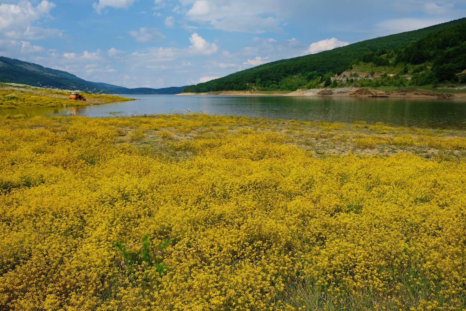 Lake Mavrovo, North Macedonia