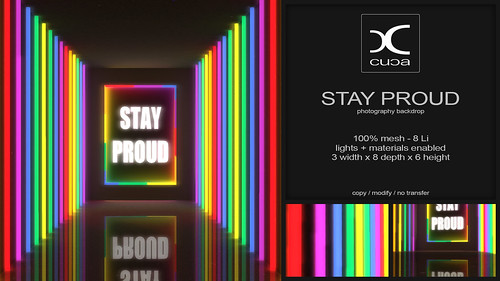 Stay Proud Backdrop FREE GIFT @ Burrow Co.