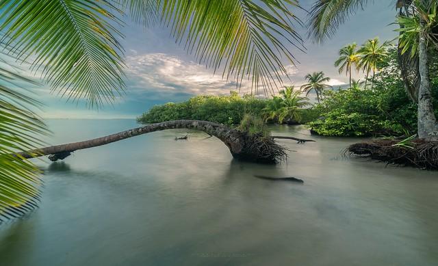 Bastimentos Island - Bocas Del Toro - Panama 2021