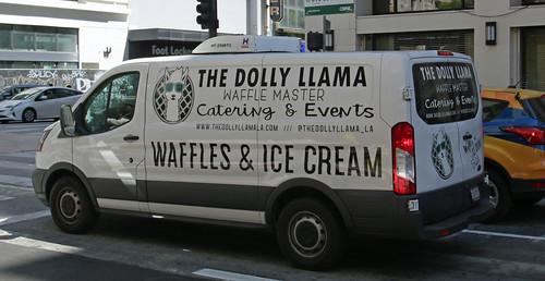 The Dolly Llama (6362)