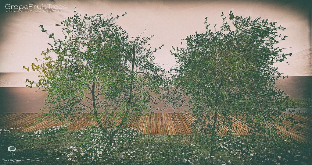 The Little Branch – Grapefruit Tree – UBER
