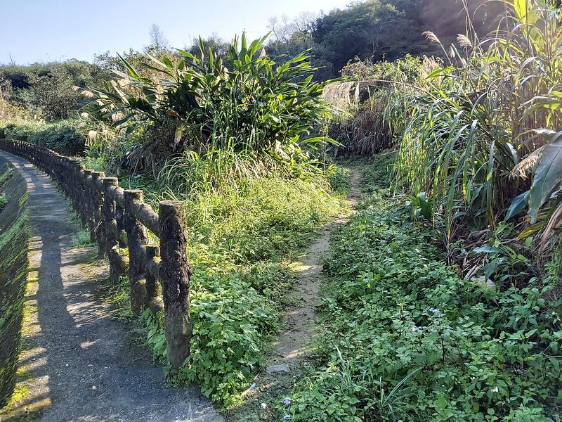 Hike between Shihfen and Shuangxi