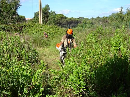 Sur le tronçon le plus critique avec les grandes herbes entravant les débroussailleuses