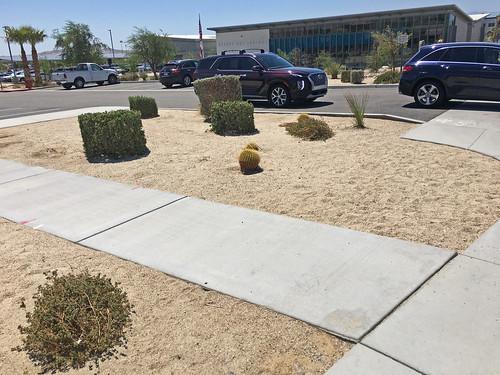 Desert Hot Springs Public Library Grand Opening (2192)