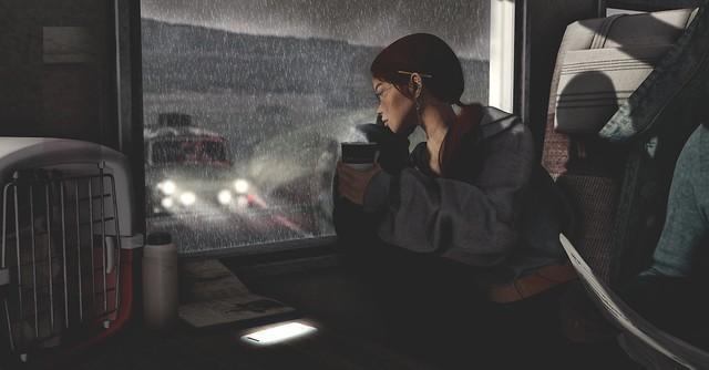 The shadow of the rain