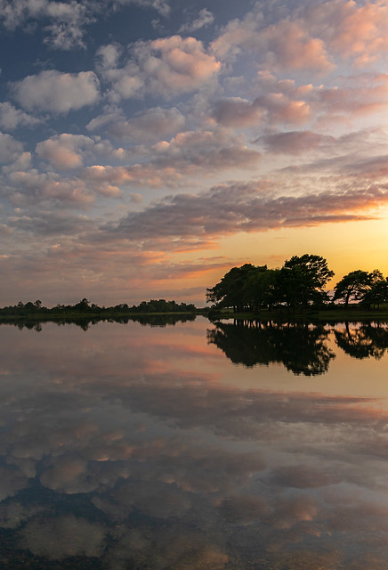 Hatchet Pond reflections