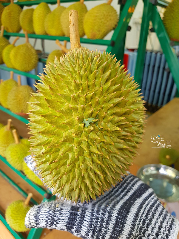durian d101 characteristic