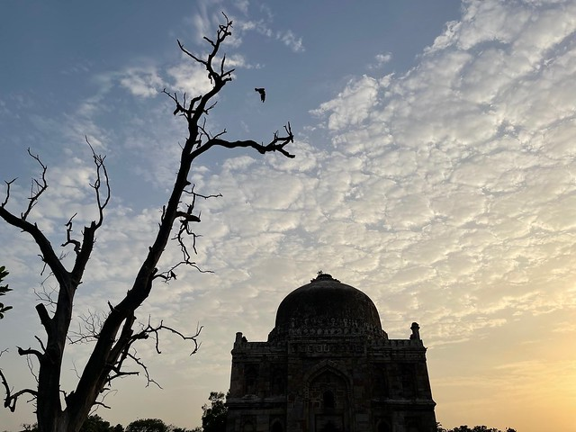 City Hangout - Post-Second Surge Lodhi Garden, Central Delhi