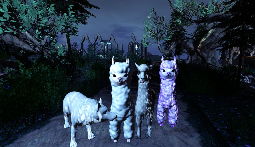 Alpacalypse, Llamageddon and A Sheep in Wolf's Clothing