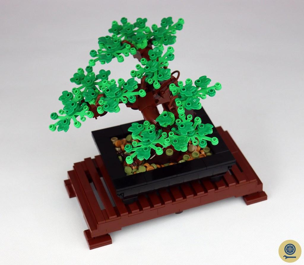 10281 Bonsai Tree (4)
