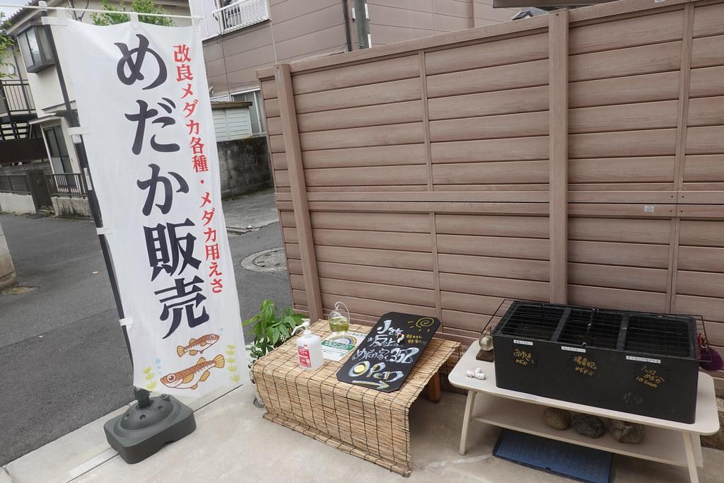 めだか(小竹向原)