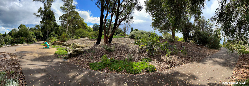 Mt Annan Botanic Gardens Landscape, Campbelltown, NSW