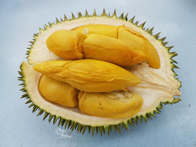 durian d101