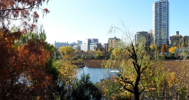 Ueno Park autumn view (Explored)