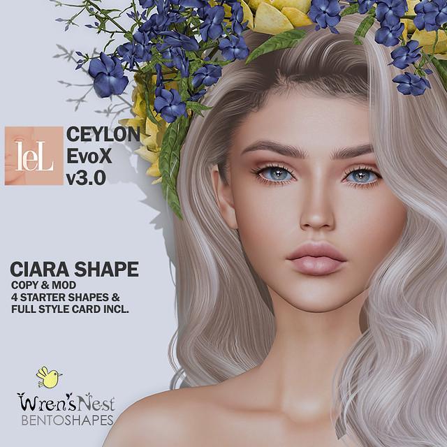 { wren's nest } Ciara Shape for LeLutka Ceylon