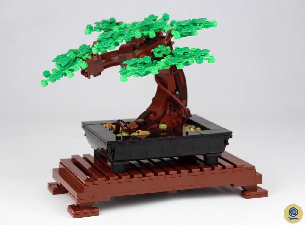 10281 Bonsai Tree (1)
