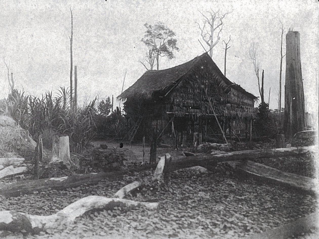 Деревенский дом. Суматра