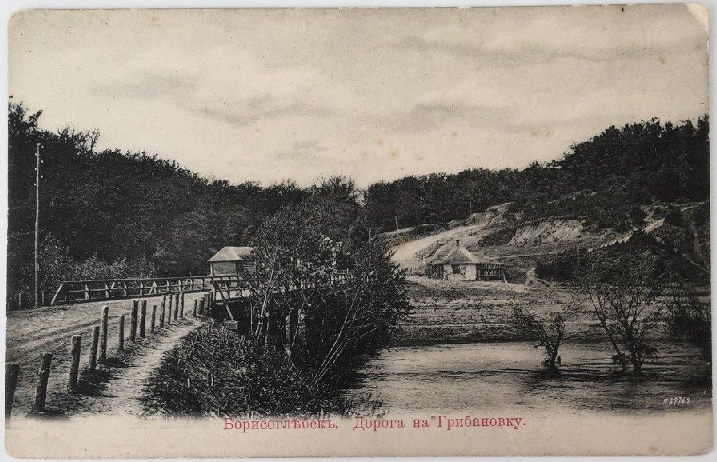 Дорога в Грибановку