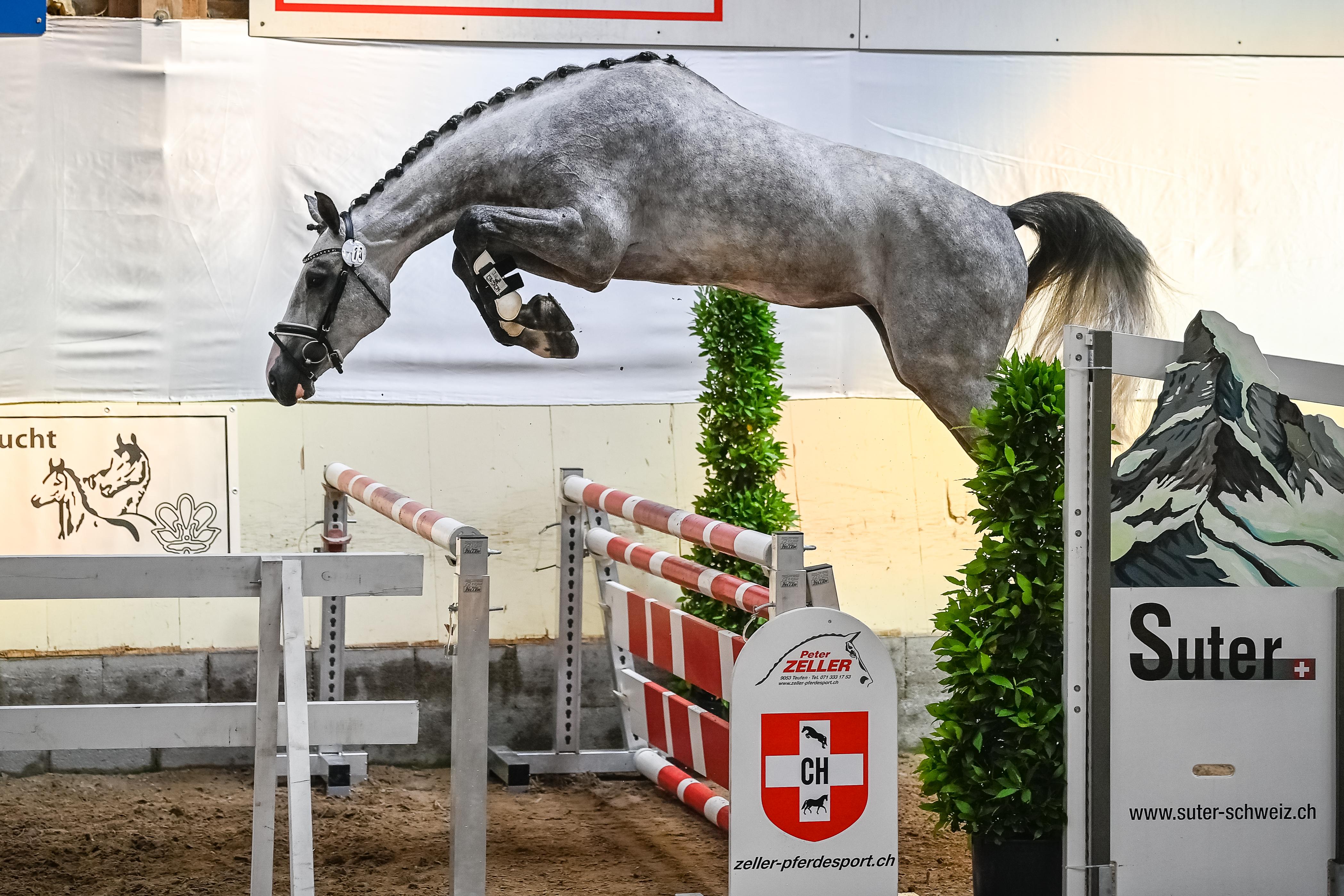 2021 Feldtest Rickenbach ZH (Schweiz)