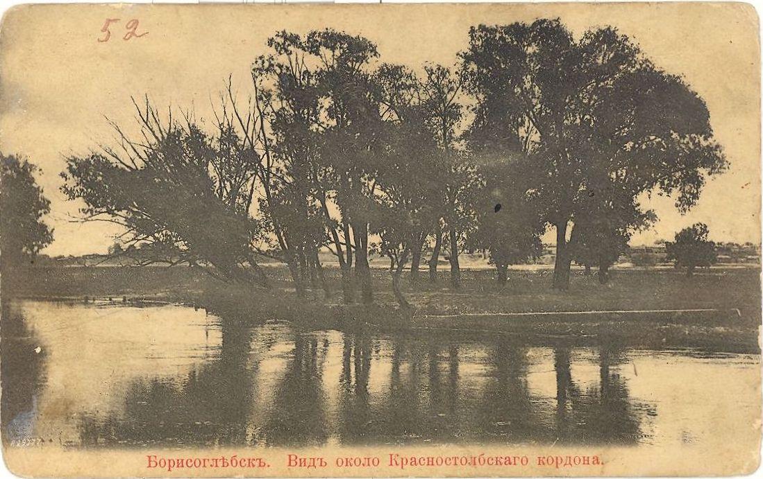 Вид у Красностолбского кордона