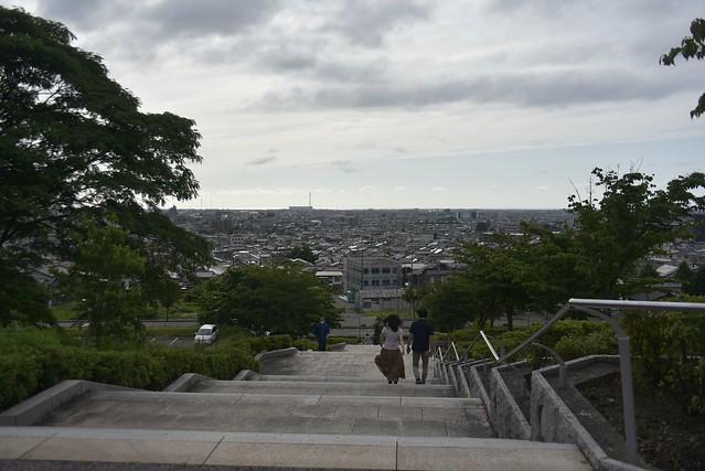 大乗寺山丘陵公園の紫陽花