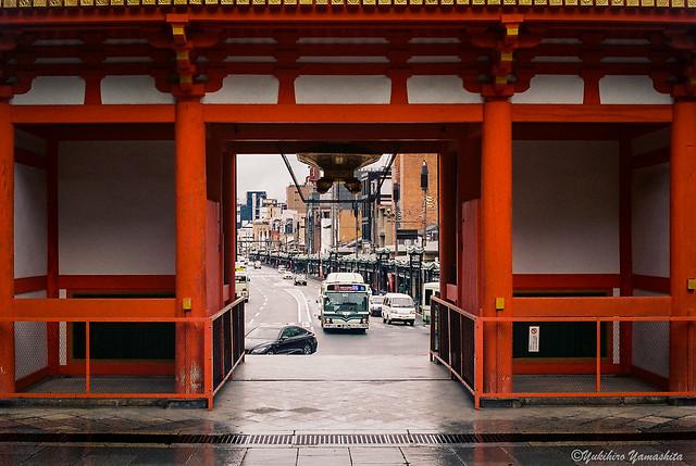 Through the shrine gate