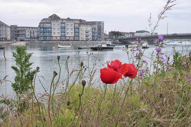 By the Adur