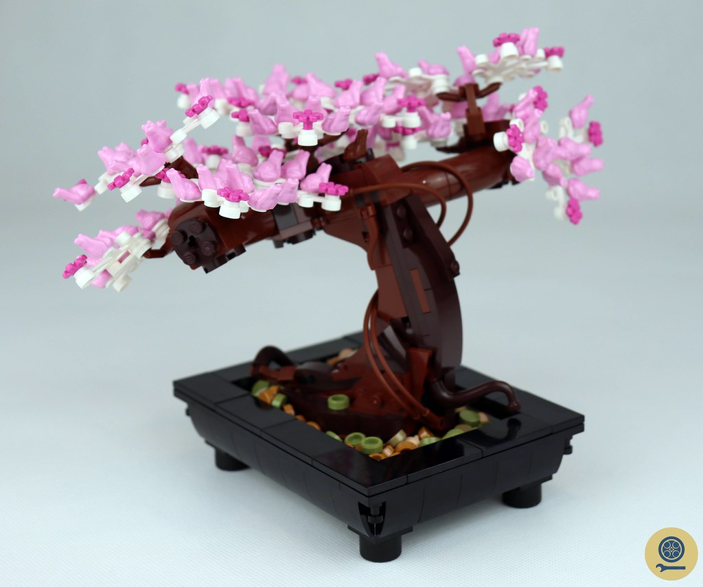 10281 Bonsai Tree (7)