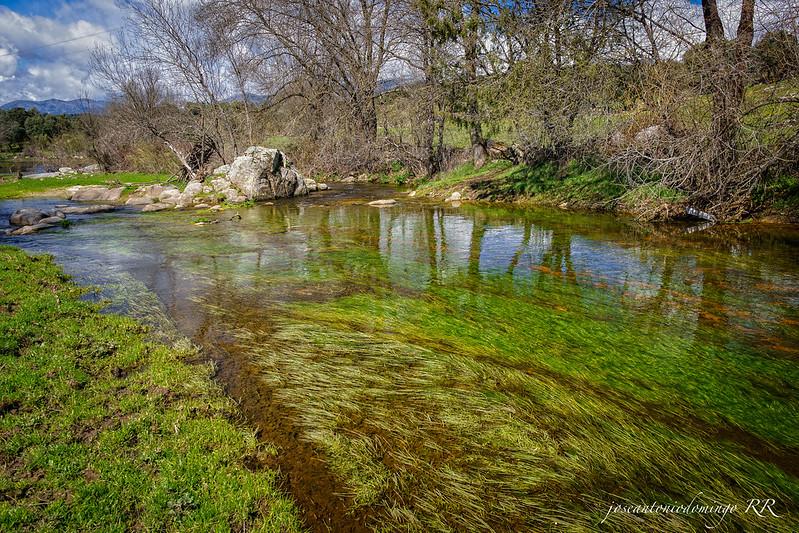 Reflejos del río (Garganta de Torinas)