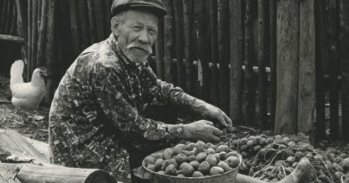 1967. Дедушка с картошкой