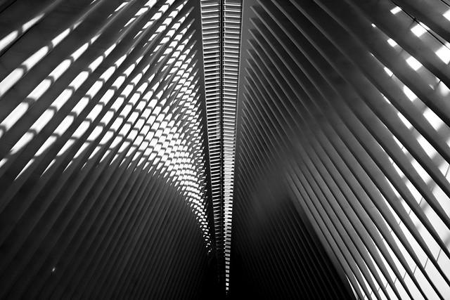 Shadowplay (B&W) - Oculus, New York City