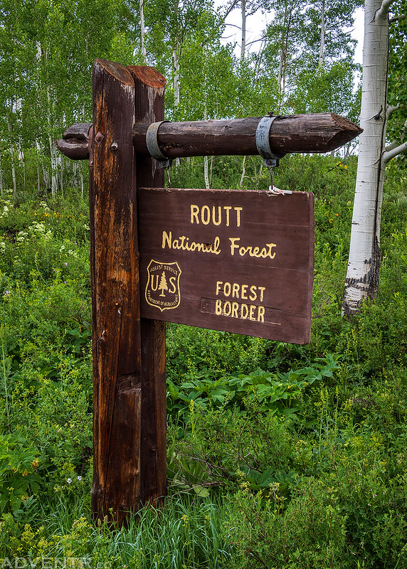 Routt Forest Border Sign