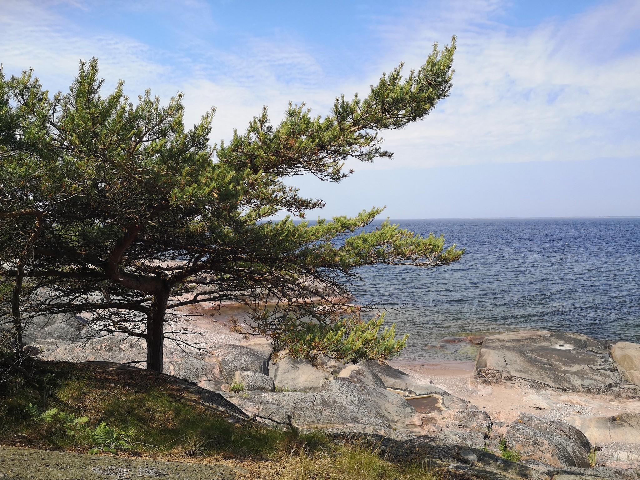 Örö Saaristomeren kansallispuisto