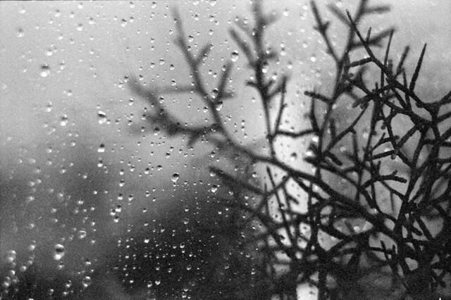 Raindrops outside