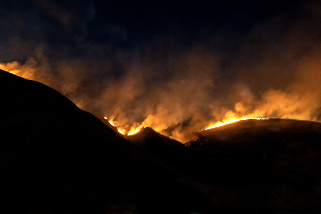 California Brush Fire - night